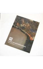 Aukcja Sztuki Współczesnej 29-5-2014 DESA